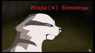 Кто ты из книги Коты- Воители?