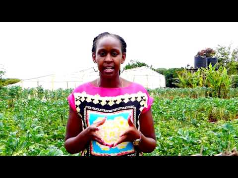 Caroline Sitienei - Graduated farmer from Kenya
