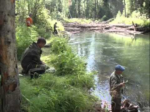 рыбалка в верховьях оби видео