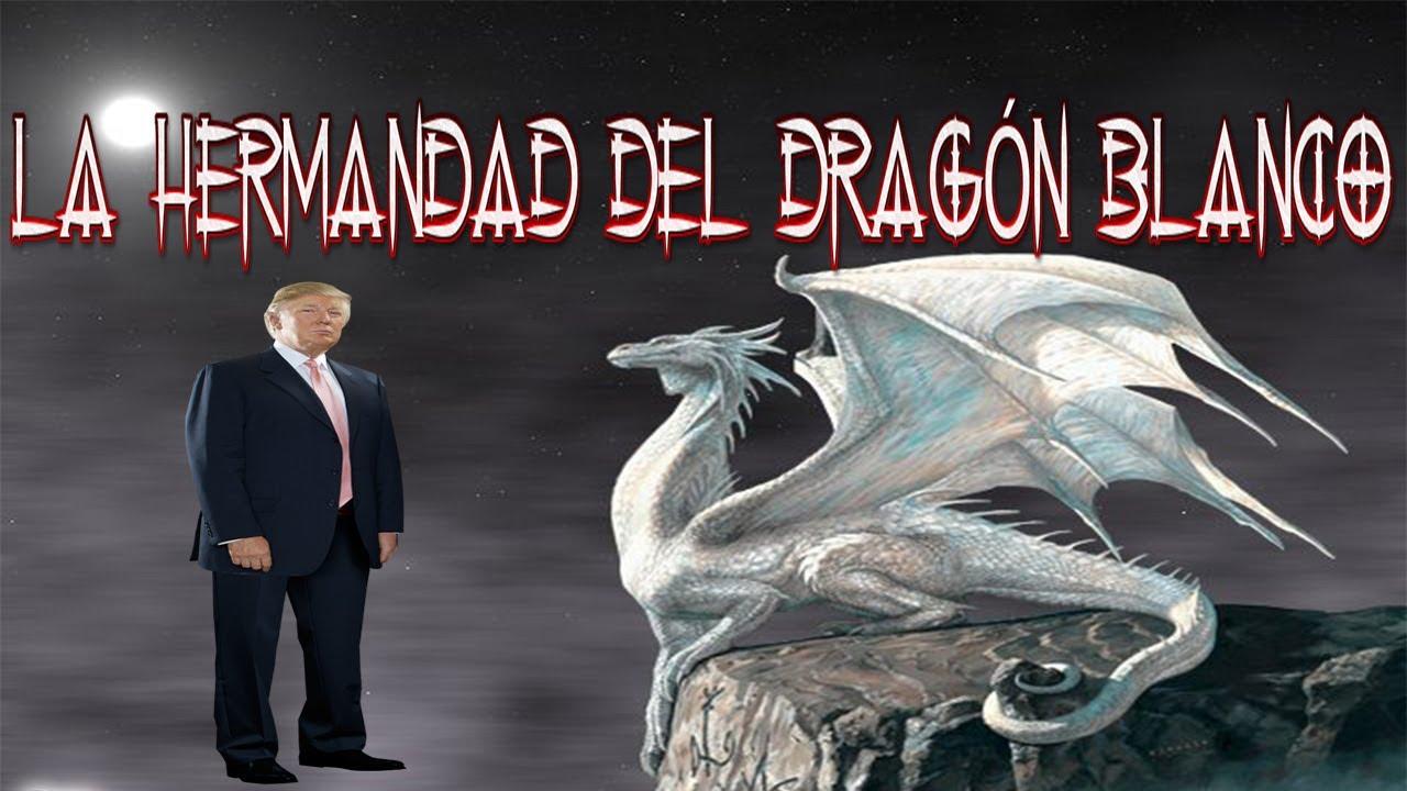 LA HERMANDAD DEL DRAGÓN BLANCO