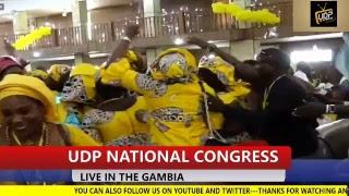 UDP TV MEDIA TV Live Stream