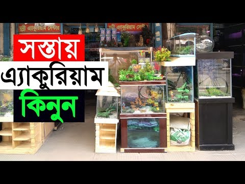 Fish Aquarium Price In Bd Buy Aquarium From Katabon At Dhaka