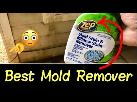 👊Best Mold Remover | How to Get Rid of Mold, Mildew, Black Mold on Walls, Tile, Ceiling (Part 1)