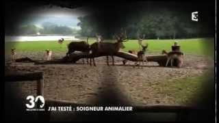 30 Millions d'amis au Parc Animalier de Sainte-Croix - le métier de soigneur animalier