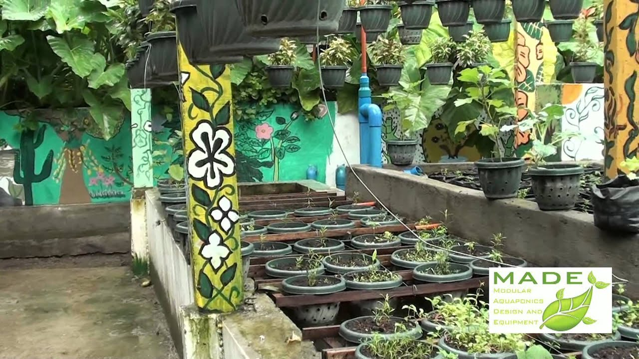 MADE Growing Systems Aquaponics Philippines, September ...