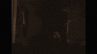 CREEPYPASTA – La Nuit [LEKTOR PL]