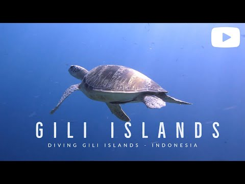 Diving Gili Islands, Lombok - Indonesia