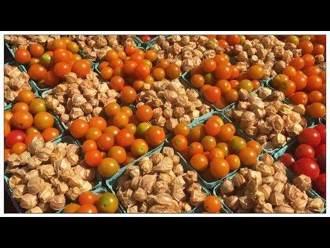 Vegan Food & Euphemisms At The Farmers Market
