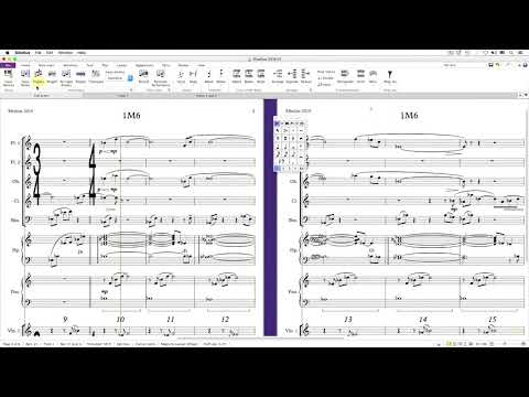 Overview (Sibelius 2019 Explained)