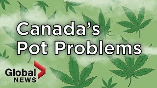 Why are some Canadian cannabis companies struggling?