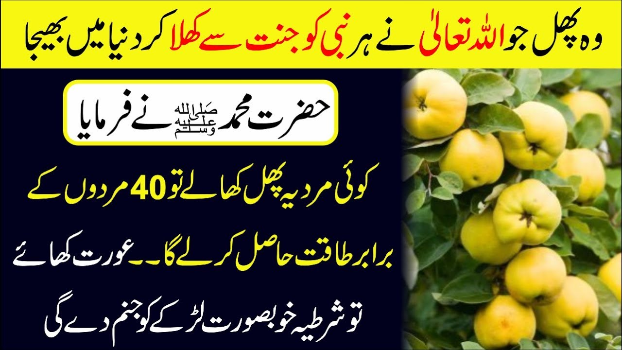 health benefits of quince in urdu | quince health benefits | smart urdu tips