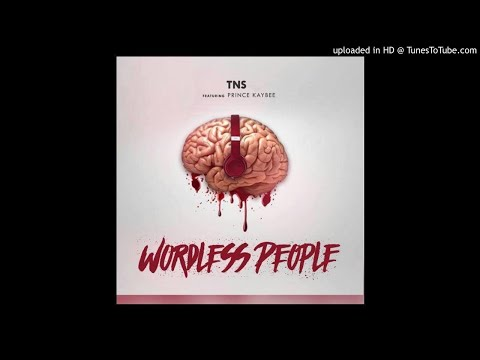 TNS ft Prince Kaybee - Wordless People