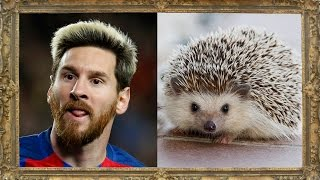 15 Footballers Who Look Like Animals