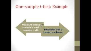 One Sample and Paired Sample t Test Tutorial