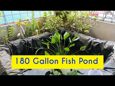 How to build a Terrace Fish Pond with Tarp