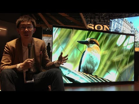 Sony Launch AF8/ A8F OLED TV & XF90/ X900F LED LCD at CES 2018