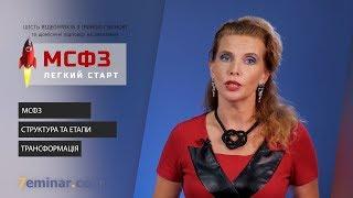 МСФЗ: легкий старт | відеокурс з Іриною Губіною