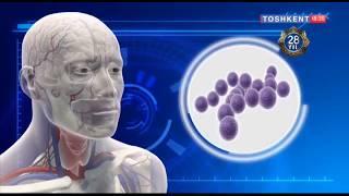 Salomat bo`ling | Гайморит, фарингит ва танзилит касалликлари [22.08.2019]