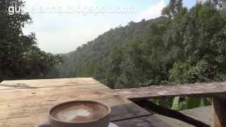 เที่ยวบ้านแม่กำปองหน้าหนาว ได้หหนวสมใจ หนาวๆแบบนี้ต้องจิบชา หรือกาแฟ ที่ชาวบ้านหมู่บ้านแม่กำปองมีการปลูกเมี่ยง ชา และกาแฟอาราบิก้า ที่มีคุณภาพมาก คลิปท่องเที...