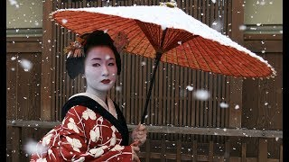 The Secret World Of Geishas