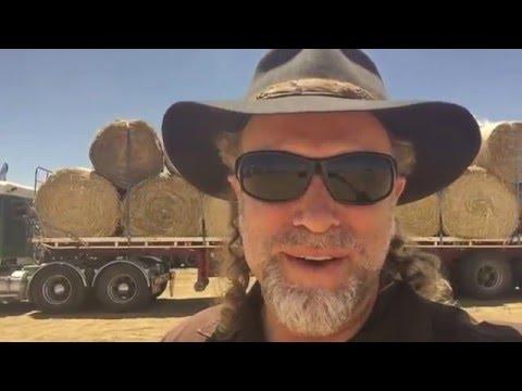 The Hay Run