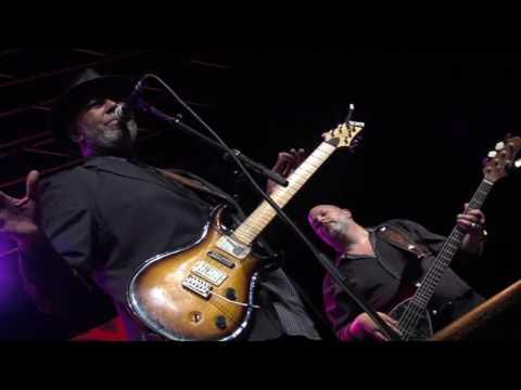 Zac Harmon - Knocking on Heaven's Door (Rhino Jazz 2016)