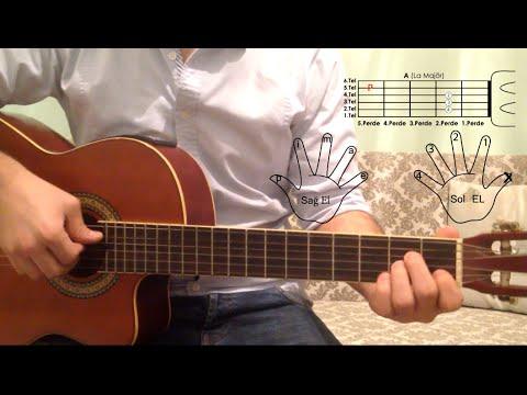 Gitarda Parmak, Tel, Perde İsimleri ve Nasıl Kullanıldıkları