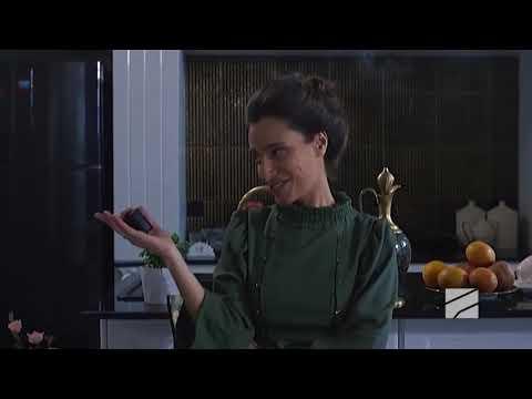 """შაგუს გაბრაზებები- ,,ჩემი ცოლის დაქალებიდან"""""""