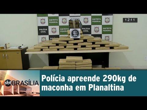 Polícia apreende 290 kg de maconha em Planaltina