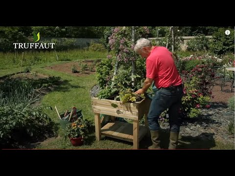 comment faire un carr potager jardinerie truffaut tv youtube. Black Bedroom Furniture Sets. Home Design Ideas