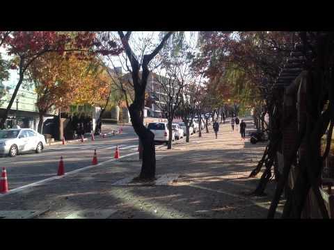 The National University of Seoul. 2