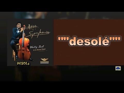 WALLY SECK  DESOLE (lyrics)