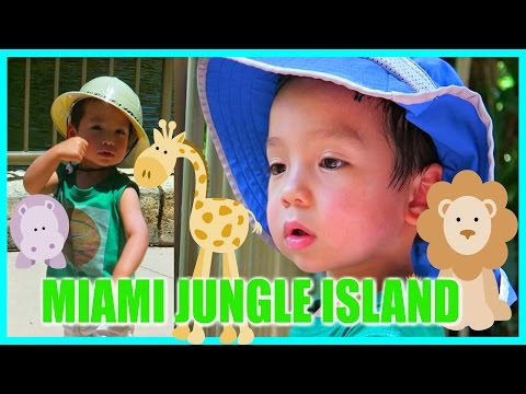 🐵 JUNGLE ISLAND IN MIAMI FOR KIDS! 🐢