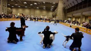 2009FCI東京インター グループ戦 2席ゲット!! NEWチャンピオン...