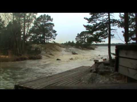 Vídeo - Raio cai em rio e mata vários peixes - A verdade