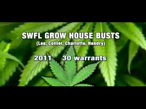 FLORIDA MARIJUANA GROW HOUSES