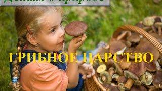 видео Какие бывают грибы: строение гриба и способы размножения грибов