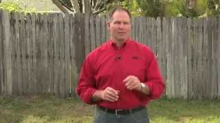 How To Stop Lawn Weeds - Ace Hardware