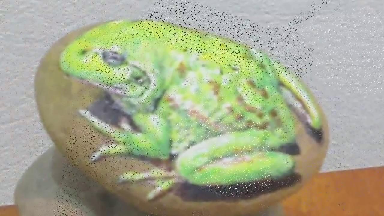 Quá trình vẽ một con ếch trên viên sỏi .- How to paint a rock cheesy .