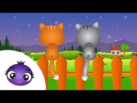 Aaaa kotki dwa - kołysanki dla dzieci na dobranoc