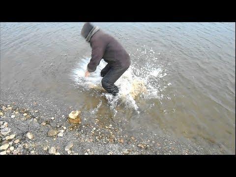 Ловля живца место, где собирается рыбья