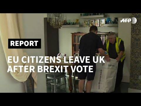 The EU expats leaving the UK over Brexit