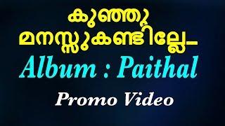 കുഞ്ഞു മനസ്സുകണ്ടില്ലേ | Kunju Manassu | Promo Video | Paithal