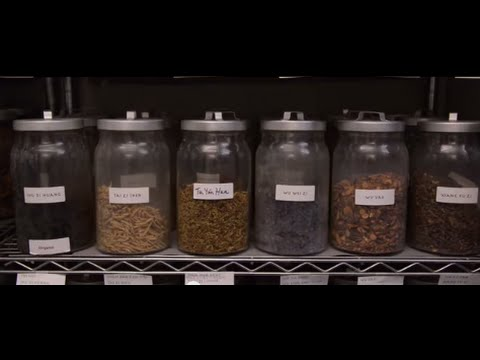 Chinese Herbal Medicine at Holistic Primary Care