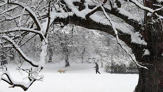 - 20 Grad und kälter: Sibirische Kälte erreicht Deutschland und seine Nachbarn