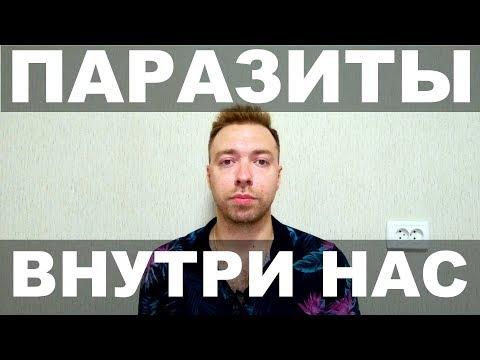 Паразиты Глисты Гельминты / Заражение/ Профилактика / Лечение