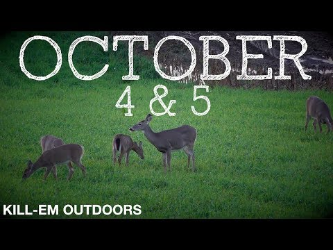 October 4 & 5 Deer Hunting Western NY