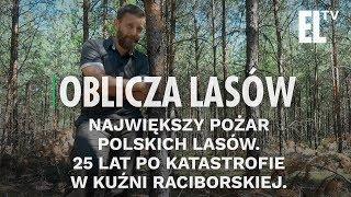 Największy pożar polskich lasów. 25 lat po katastrofie w Kuźni Raciborskiej   Oblicza lasów #36