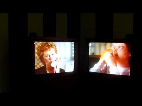 "Aleesa Cohene, Or Gallery,Vancouver B.C. Canada, Exhibion, "" Like Like"", 2009"