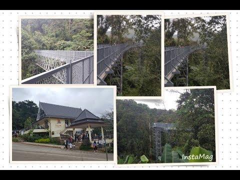 Canopy Walk in Queen Sirikit Botanic Garden